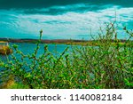 a young bush in the nature ... | Shutterstock . vector #1140082184