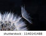 dandelion seed in black . ... | Shutterstock . vector #1140141488