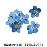 blue forget me not spring... | Shutterstock .eps vector #1140180743