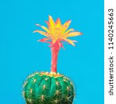 Small photo of Cactus tropical. Minimal Concept. Contemporary Art. Trendy Color. Creative Modern Cacti Style
