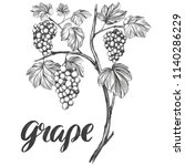 grape vine  grape  calligraphy... | Shutterstock .eps vector #1140286229