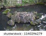 belief of throwing coins on... | Shutterstock . vector #1140296279