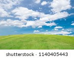 green lawn  wide meadow with... | Shutterstock . vector #1140405443