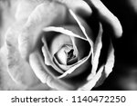 roses close up background | Shutterstock . vector #1140472250