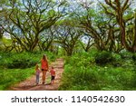 family under green canopy in... | Shutterstock . vector #1140542630