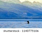 juneau  alaska   circa... | Shutterstock . vector #1140775106
