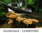 the beauty of pha tat waterfall ... | Shutterstock . vector #1140853583