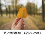 pov man hand holding autumn...   Shutterstock . vector #1140869066