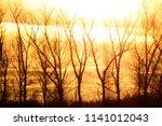 a trees in a field | Shutterstock . vector #1141012043