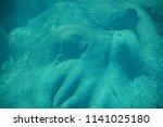 under water hippopotamus ...   Shutterstock . vector #1141025180