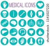 medical health care. human...   Shutterstock .eps vector #1141027220