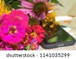 still life with bright summer...   Shutterstock . vector #1141035299