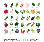 list of common vegetables  clip ... | Shutterstock .eps vector #1141049210