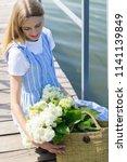 a wonderful  beautiful girl on... | Shutterstock . vector #1141139849