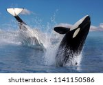 two killer whale or orca ... | Shutterstock . vector #1141150586
