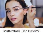 pink lips. green eyed good... | Shutterstock . vector #1141199099