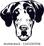 Great Dane Dog Breed Pet