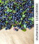 bunch of blueberries. nature... | Shutterstock . vector #1141280060