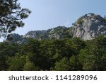 large lush trees under the blue ... | Shutterstock . vector #1141289096