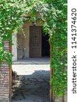 old building door entwined with ... | Shutterstock . vector #1141374620