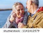 portrait of happy senior couple ... | Shutterstock . vector #1141412579