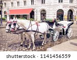 traditional carriage of two... | Shutterstock . vector #1141456559