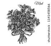 bouquet of mint. sketch.... | Shutterstock .eps vector #1141458566