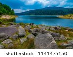 sea   dam in black forest  ...   Shutterstock . vector #1141475150