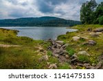 sea   dam in black forest  ... | Shutterstock . vector #1141475153