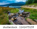 sea   dam in black forest  ... | Shutterstock . vector #1141475159