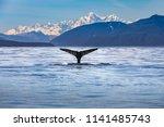 Scenic Alaskan Landscape With ...