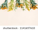 autumn floral composition.... | Shutterstock . vector #1141657610