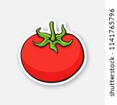 vector illustration. red tomato ... | Shutterstock .eps vector #1141765796