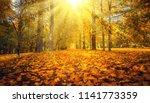 autumn landscape. autumn nature.... | Shutterstock . vector #1141773359