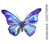 beautiful blue butterfly... | Shutterstock . vector #1141774949
