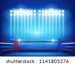 boxing ring surrounded by... | Shutterstock .eps vector #1141805276
