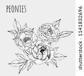 peonies  engraving style  vector   Shutterstock .eps vector #1141832696