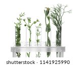 test tubes with plants in...   Shutterstock . vector #1141925990