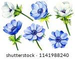 set of flower white and blue... | Shutterstock . vector #1141988240