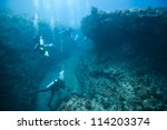 divers and hard coral | Shutterstock . vector #114203374
