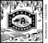 apple orchard black and white.... | Shutterstock .eps vector #114211900