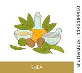 shea. leaves  fruit. bottle...   Shutterstock . vector #1142184410