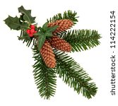 Christmas Decorative Flora...