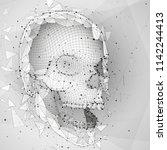 3d vector human skull of all... | Shutterstock .eps vector #1142244413