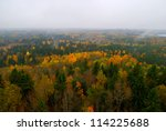 forest hills covered with mist... | Shutterstock . vector #114225688