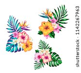 tropical collection with exotic ... | Shutterstock .eps vector #1142267963