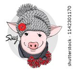 vector pig with grey knitted... | Shutterstock .eps vector #1142301170