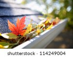 Rain Gutter Full Of Autumn...