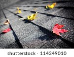 autumn leaves on a roof | Shutterstock . vector #114249010