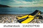 swimming equipment flippers...   Shutterstock . vector #1142537930